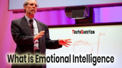 Photo of What is emotional intelligence? Discovering the importance of emotions