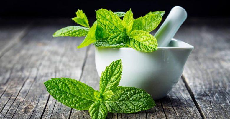 mint leavesin cup